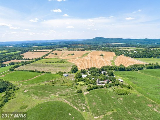 Lot-Land - DICKERSON, MD (photo 3)