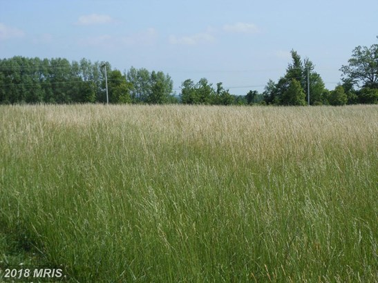 Lot-Land - NORTH EAST, MD (photo 4)