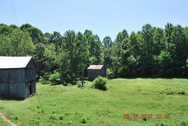 Beef Cattle, Lots/Land/Farm - Bedford, VA (photo 5)