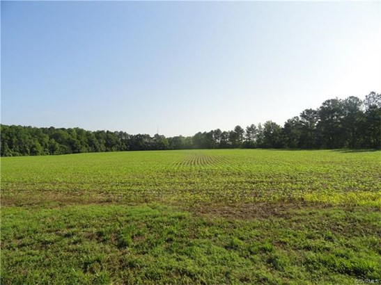 Lots/Land - North Dinwiddie, VA (photo 2)