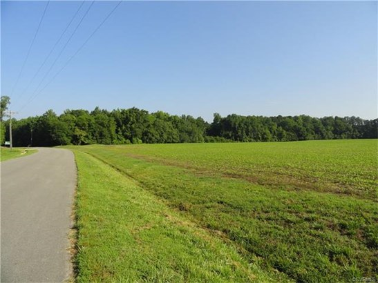 Lots/Land - North Dinwiddie, VA (photo 3)