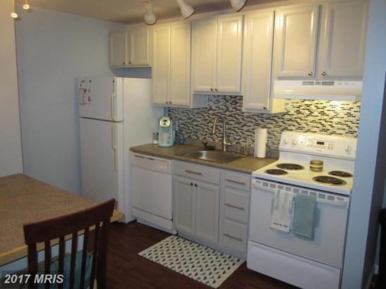 Garden 1-4 Floors, Other - GREENSBORO, MD (photo 2)