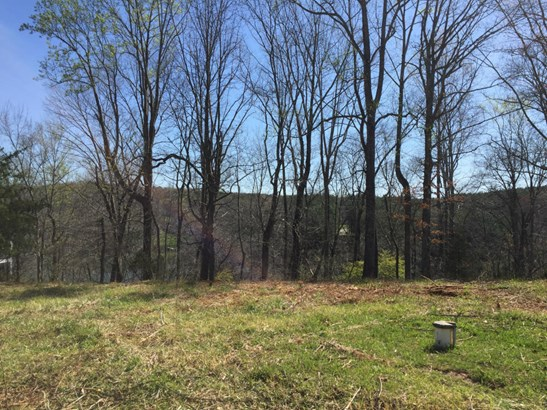 Lot, Lots/Land/Farm - Hardy, VA (photo 4)