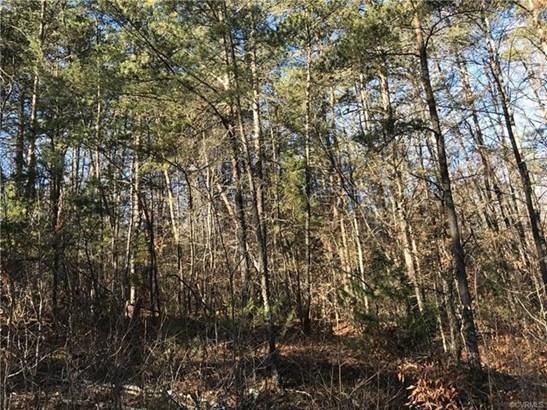Lots/Land - Bumpass, VA (photo 2)