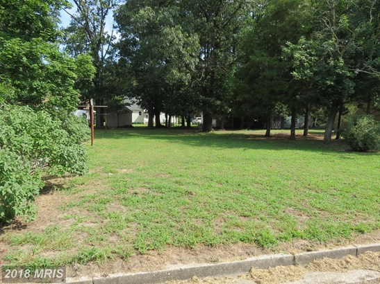 Lot-Land - FEDERALSBURG, MD (photo 2)