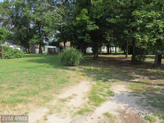 Lot-Land - FEDERALSBURG, MD (photo 3)