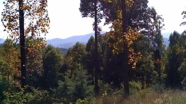 Land (Acreage), Lots/Land/Farm - Blue Ridge, VA (photo 1)