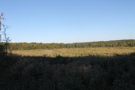 Land/Lots - Kenbridge, VA (photo 5)