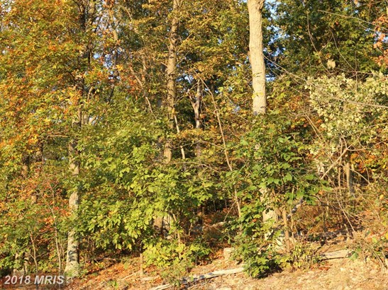 Lot-Land - GERRARDSTOWN, WV (photo 5)