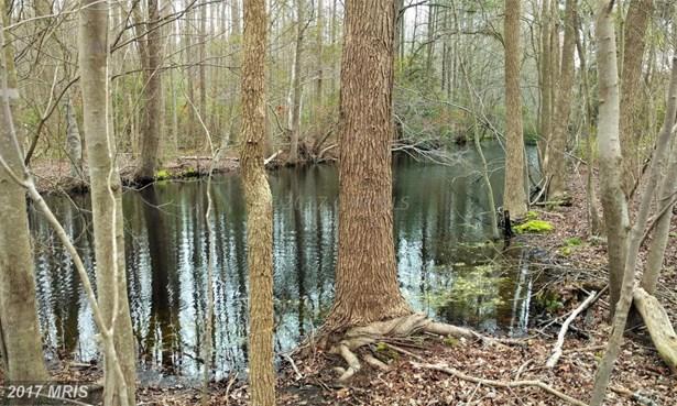 Lot-Land - PITTSVILLE, MD (photo 3)