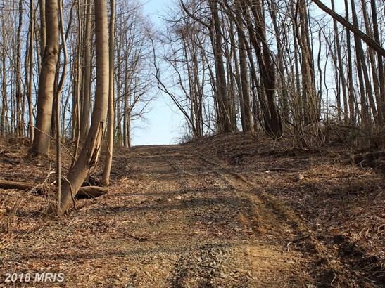 Lot-Land - ELKTON, MD (photo 5)