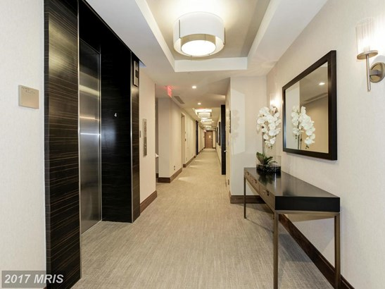 Mid-Rise 5-8 Floors, Contemporary - BETHESDA, MD (photo 5)