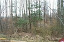 Lot-Land - NEWBURG, MD (photo 1)