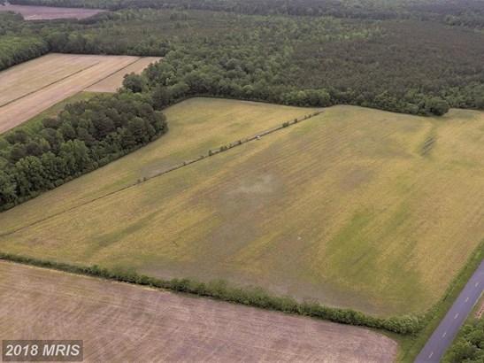 Lot-Land - PARSONSBURG, MD (photo 3)