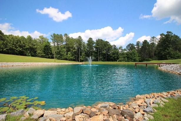 Residential/Vacation, 1.5 Story,Farm - Brodnax, VA (photo 4)