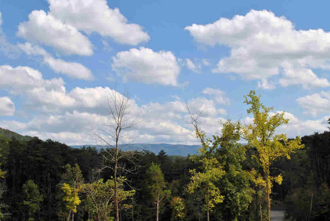 Land - Elliston, VA (photo 3)