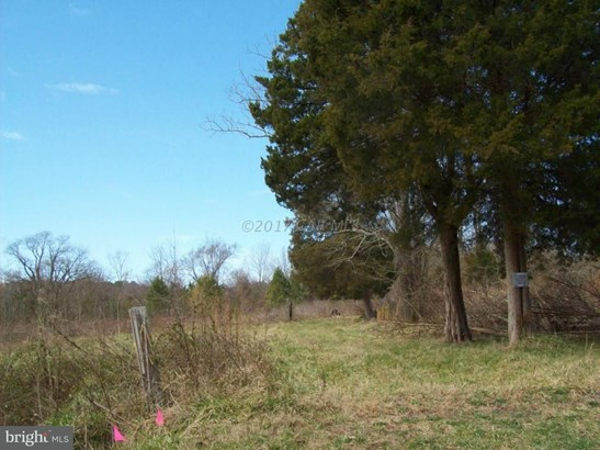 Land - BIVALVE, MD (photo 1)