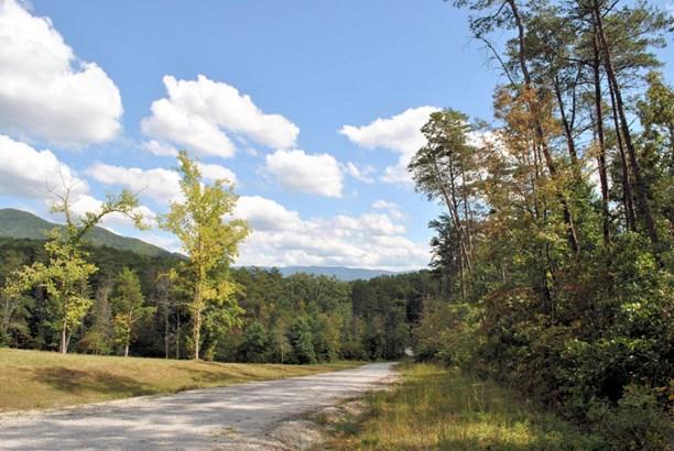 Land (Acreage), Lots/Land/Farm - Elliston, VA (photo 4)