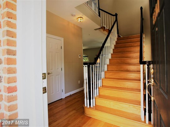 Townhouse, Contemporary - BETHESDA, MD (photo 5)