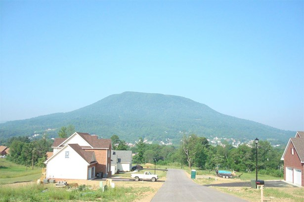 Townhouse - Pearisburg, VA (photo 4)
