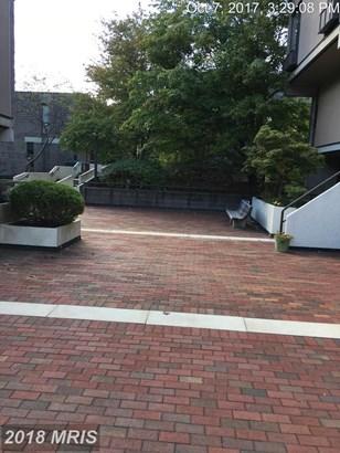 Garden 1-4 Floors, Contemporary - BALTIMORE, MD (photo 2)