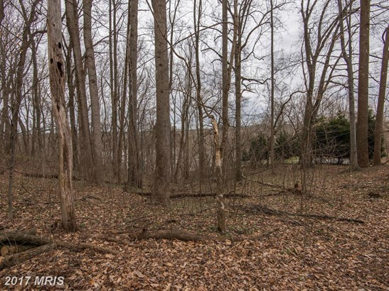Lot-Land - GREAT FALLS, VA (photo 3)