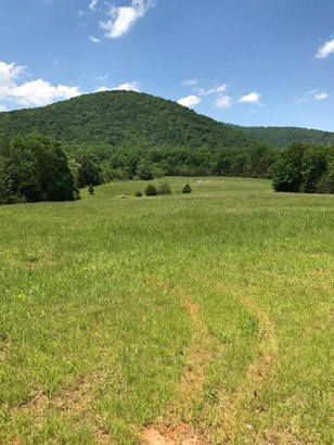 Lots/Land/Farm, Undeveloped - Hardy, VA (photo 1)