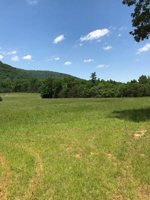 Lots/Land/Farm, Undeveloped - Hardy, VA (photo 2)