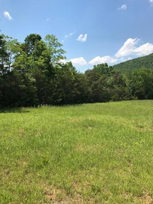 Lots/Land/Farm, Undeveloped - Hardy, VA (photo 4)