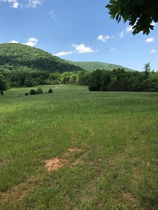 Lots/Land/Farm, Undeveloped - Hardy, VA (photo 5)