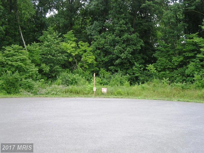 Lot-Land - CLEAR BROOK, VA (photo 1)