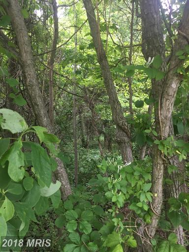 Lot-Land - HIGHLAND, MD (photo 4)
