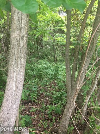 Lot-Land - HIGHLAND, MD (photo 5)