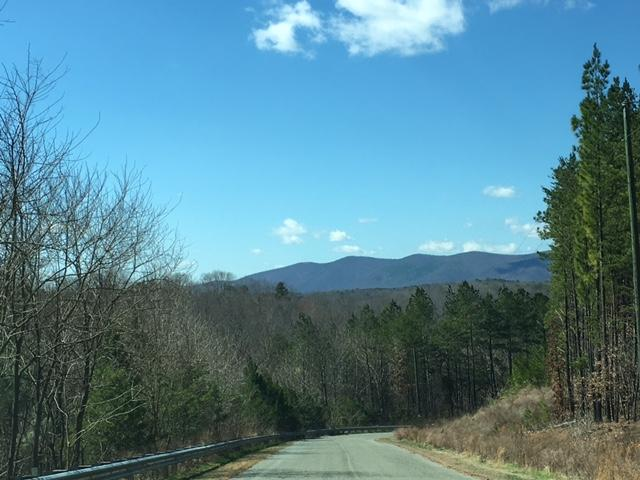 Lot, Lots/Land/Farm - Pittsville, VA (photo 1)