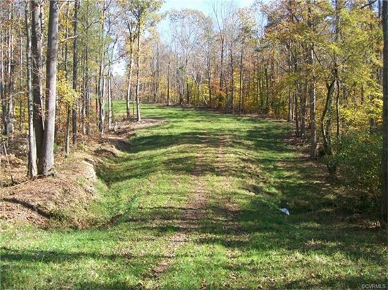 Lots/Land - Keysville, VA (photo 5)
