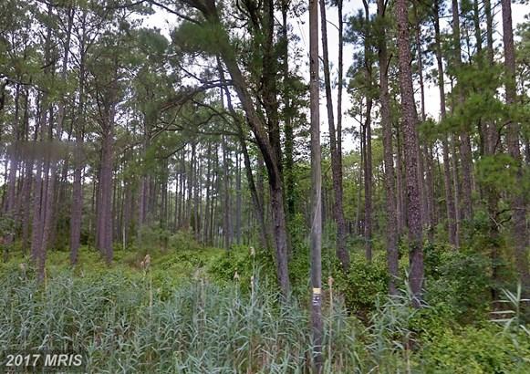 Lot-Land - CRISFIELD, MD (photo 3)