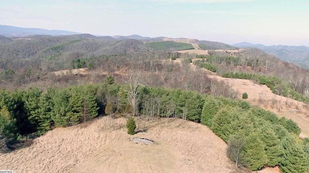 Land - MCDOWELL, VA (photo 4)