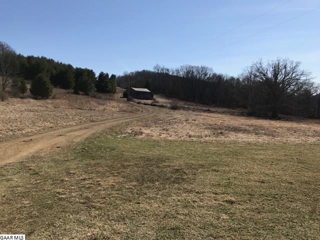 Land - MCDOWELL, VA (photo 5)