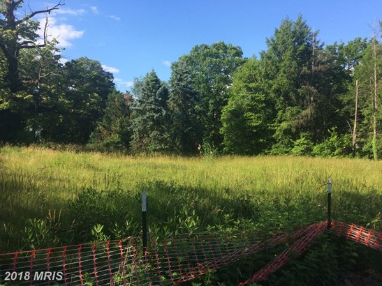 Lot-Land - LINTHICUM, MD (photo 2)