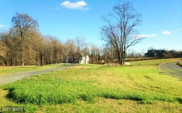 Lot-Land - ELLICOTT CITY, MD (photo 5)