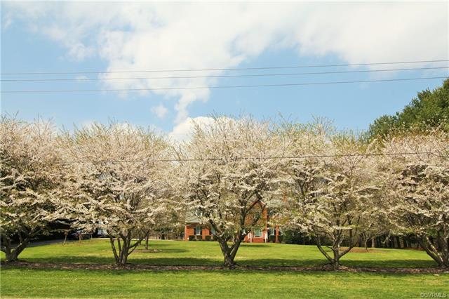 2-Story, Transitional, Single Family - Hanover, VA (photo 2)