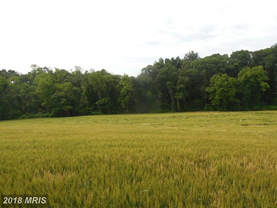 Lot-Land - WHITE HALL, MD (photo 4)