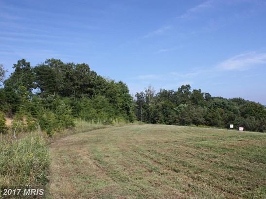 Lot-Land - MAURERTOWN, VA (photo 4)