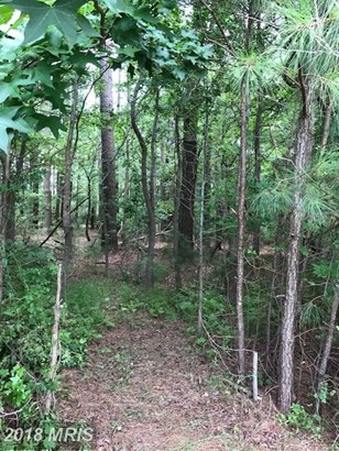 Lot-Land - OCEAN PINES, MD (photo 1)