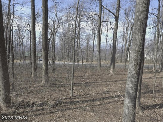 Lot-Land - BLUEMONT, VA (photo 1)