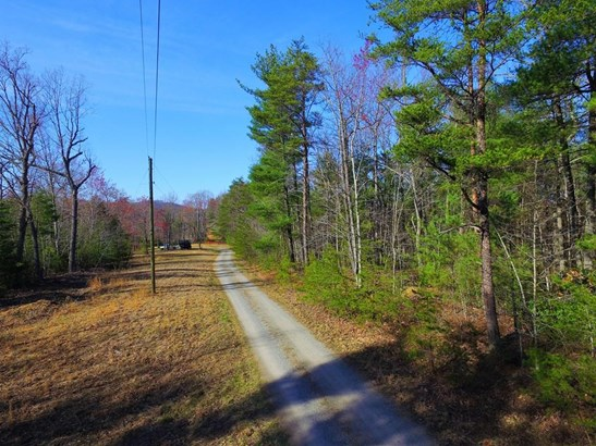 Land (Acreage), Lots/Land/Farm - Ferrum, VA (photo 5)