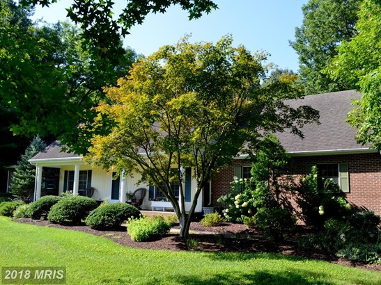 Traditional, Detached - TRAPPE, MD (photo 3)