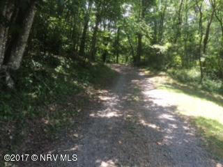 Land (Acreage), Lots/Land/Farm - Floyd, VA (photo 1)