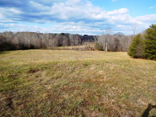 Lots/Land/Farm, Farmland, Timber, Horse Farm, Beef Cattle - Nathalie, VA (photo 1)
