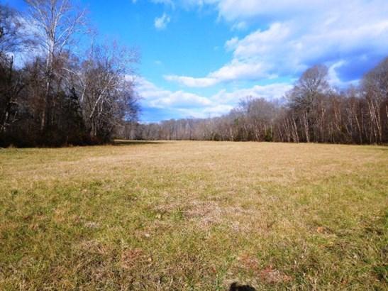 Lots/Land/Farm, Farmland, Timber, Horse Farm, Beef Cattle - Nathalie, VA (photo 2)